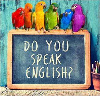 angielski wrocław, nauka angielskiego wrocław, angielski nauka wrocław, angielski wrocław korepetycje, angielski dla firm wrocław, korepetycje angielski wrocław, angielski wrocław tanio, angielski wrocław opinie, business english wrocław, szkolenia angielski wrocław, kursy angielskiego wrocław, angielski dla firm wrocław, English Parrot Wrocław, lektor języka angielskiego wrocław, korepetycje wrocław angielski, konwersacje angielski wrocław, przygotowanie do egzaminów z języka angielskiego we wrocławiu, szkoła angielskiego wrocław, Native Speaker Wrocław, konwersacje angielski wrocław, korepetycje angielski wrocław olx, korepetycje angielski wrocław native speaker, korepetycje angielski wrocław psie pole, korepetycje angielski wrocław leśnica, korepetycje angielski wrocław nowy dwór, korepetycje angielski dla dzieci wrocław, nauka angielskiego w domu wrocław, korepetycje angielski wrocław gumtree, prywatne lekcje angielskiego wrocław, angielski indywidualnie wrocław, wrocławskie konwersacje angielski, angielski biznesowy wrocław, indywidualne lekcje z języka angielskiego, powtórka do matury angielski, skuteczne przygotowania do matury z angielskiego, wrocławska matura z angielskiego, nauka angielskiego w małych grupach, angielski dla początkujących wrocław, Business English Wrocław, English in Medical Practice, Corporate English Language.